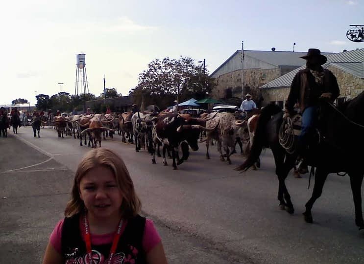 bandera texas parade with longhorns coming down main street