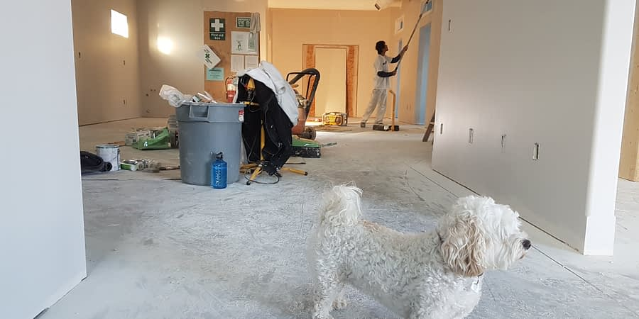 home sellers have their dog in house under construction