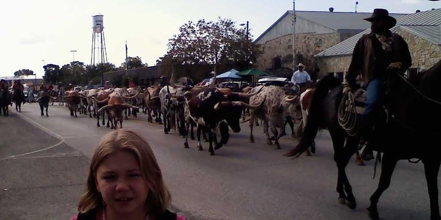 bandera texas parade with longhorns coming down main street